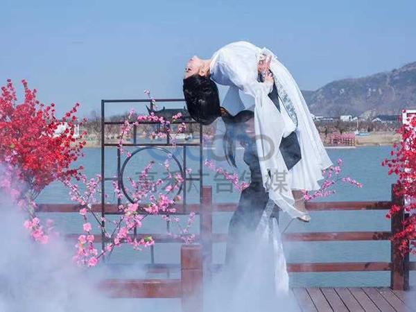 灌云首届梅花节活动
